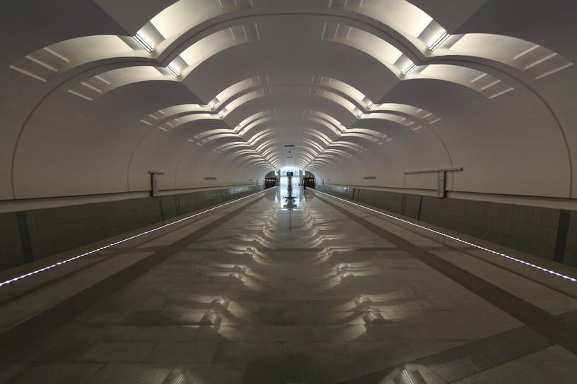 Станция Лесопарковая, общий вид