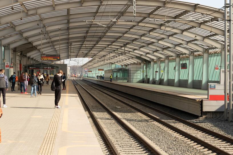 Станция Лужники, платформа
