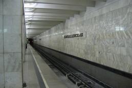 Станция Домодедовская, платформа