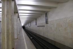 Станция Севастопольская, платформа