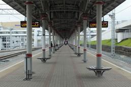 Станция Дубровка, общий вид