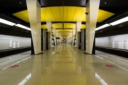Станция Шелепиха, общий вид