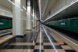 Станция Улица Дмитриевского, общий вид